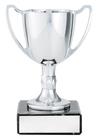 Cast Cup