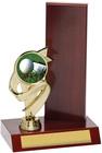Wing Trophy