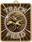 Gold Lynx Medal - Track & Field