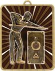 Gold Lynx Medal - Snooker / Pool