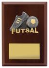 Plaque - Peak Futsal