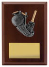 Plaque - Peak Cricket