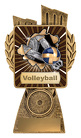 Antique Gold Lynx - Volleyball