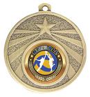 Starshine Medal - Netball