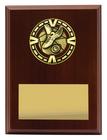 Varsity Plaque - Athletics