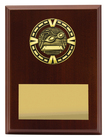 Varsity Plaque - Swim