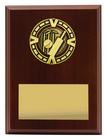 Varsity Plaque - Cricket