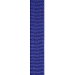 Blue Loop Ribbon