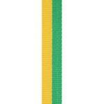 Green / Gold Loop Ribbon